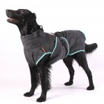 chillcoat for your dog at pet styling cecile