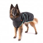 Dry your wet dog very fast with a chillcoat